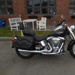 Harley-Davidson FLSTF 1450 -00 H.9800e