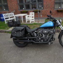 Harley-Davidson FXS Blackline -11 H.13450e