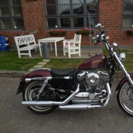Harley-Davidson XL 1200 Seventy-Two -13 h.9850E